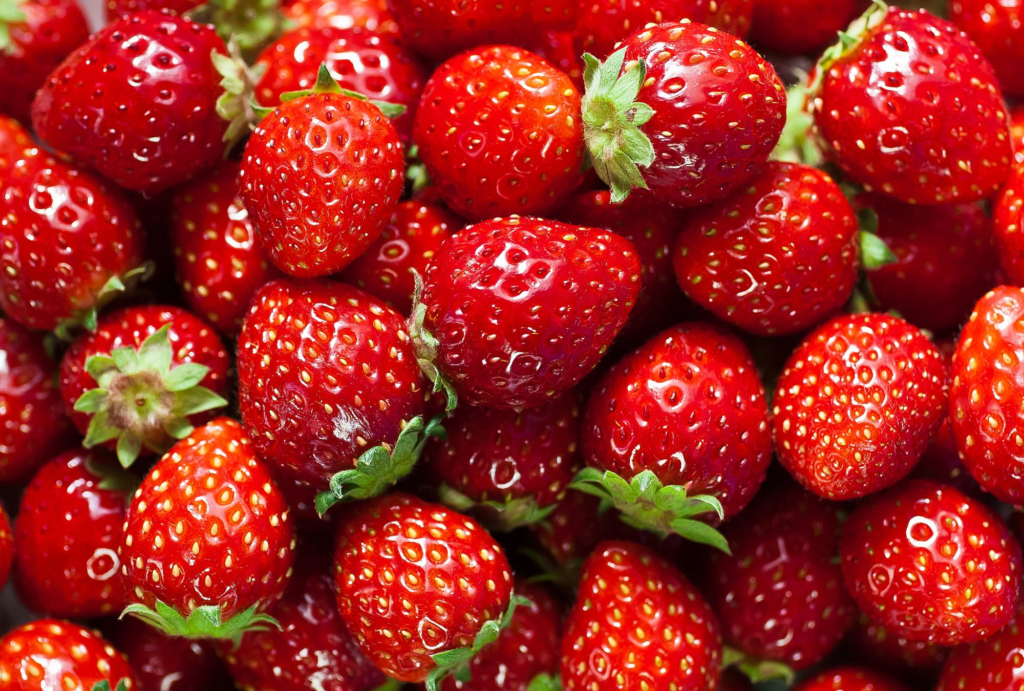 gettystrawberry.jpg