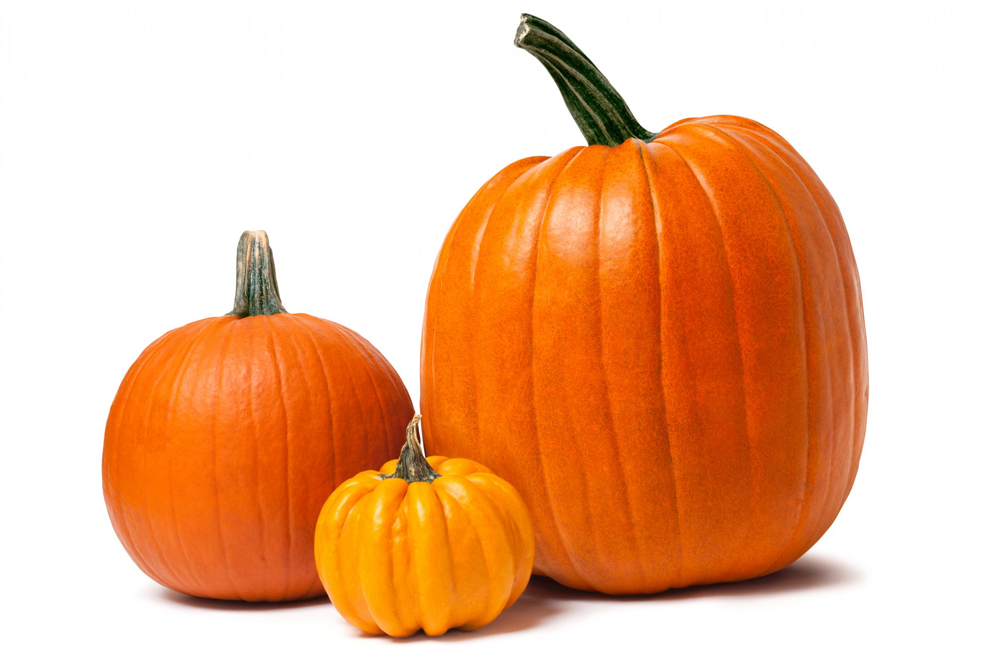 Three differently sized pumpkins.