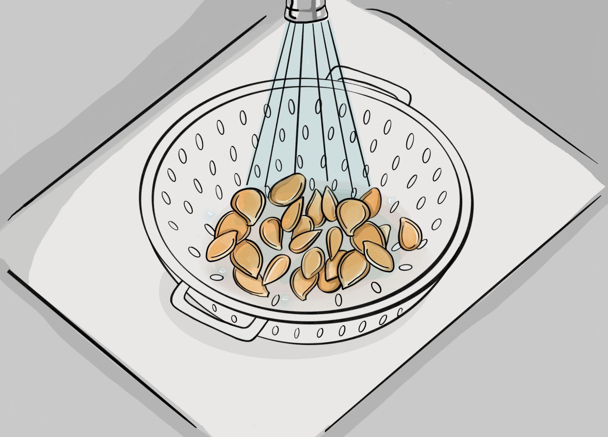1._washing_seeds_v2.jpg