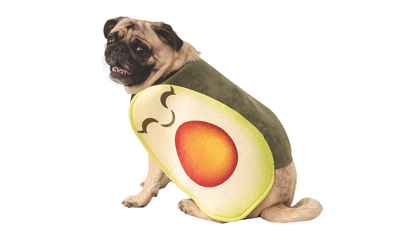 pet-avocado