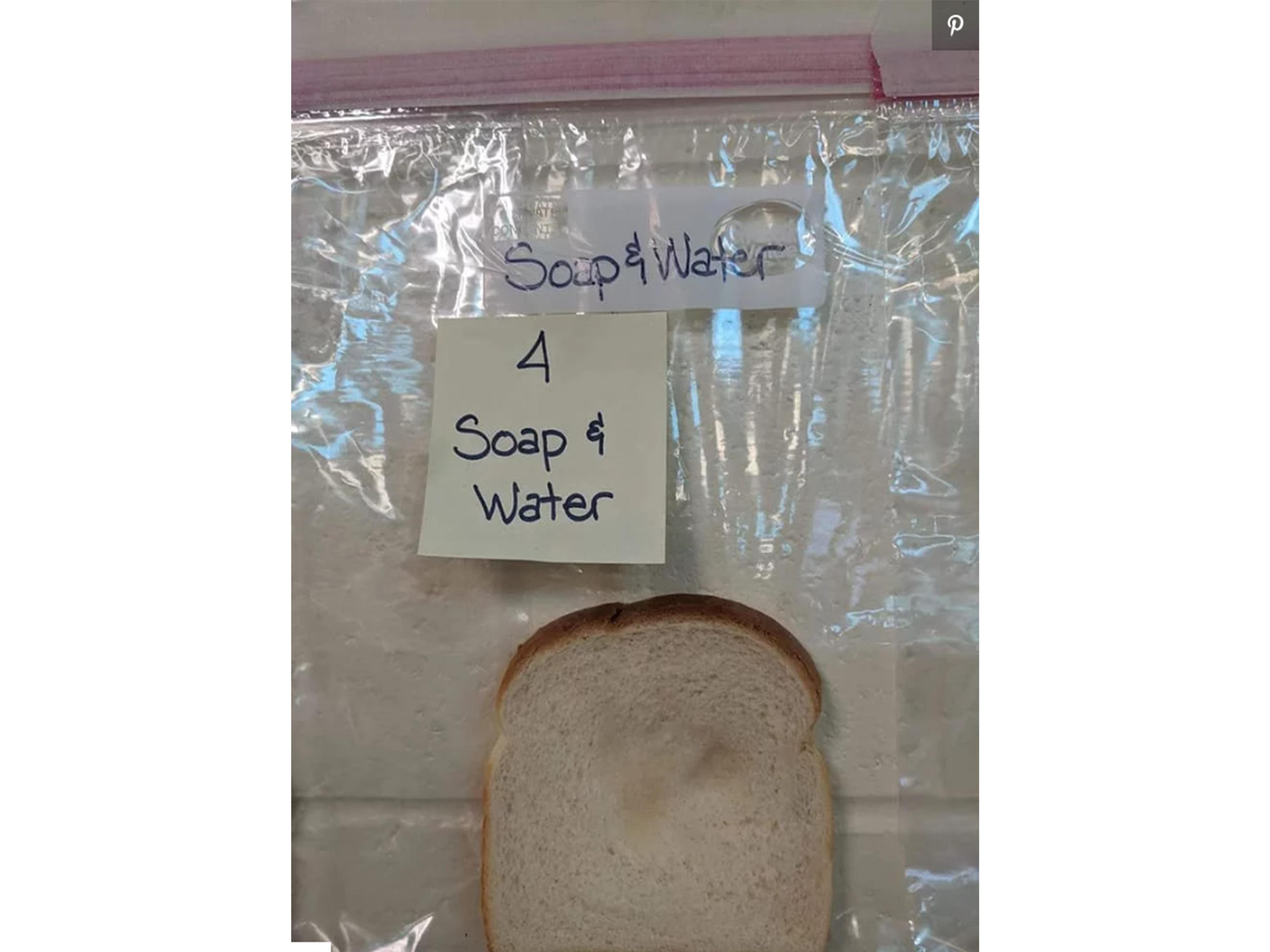 bread-experiment-4