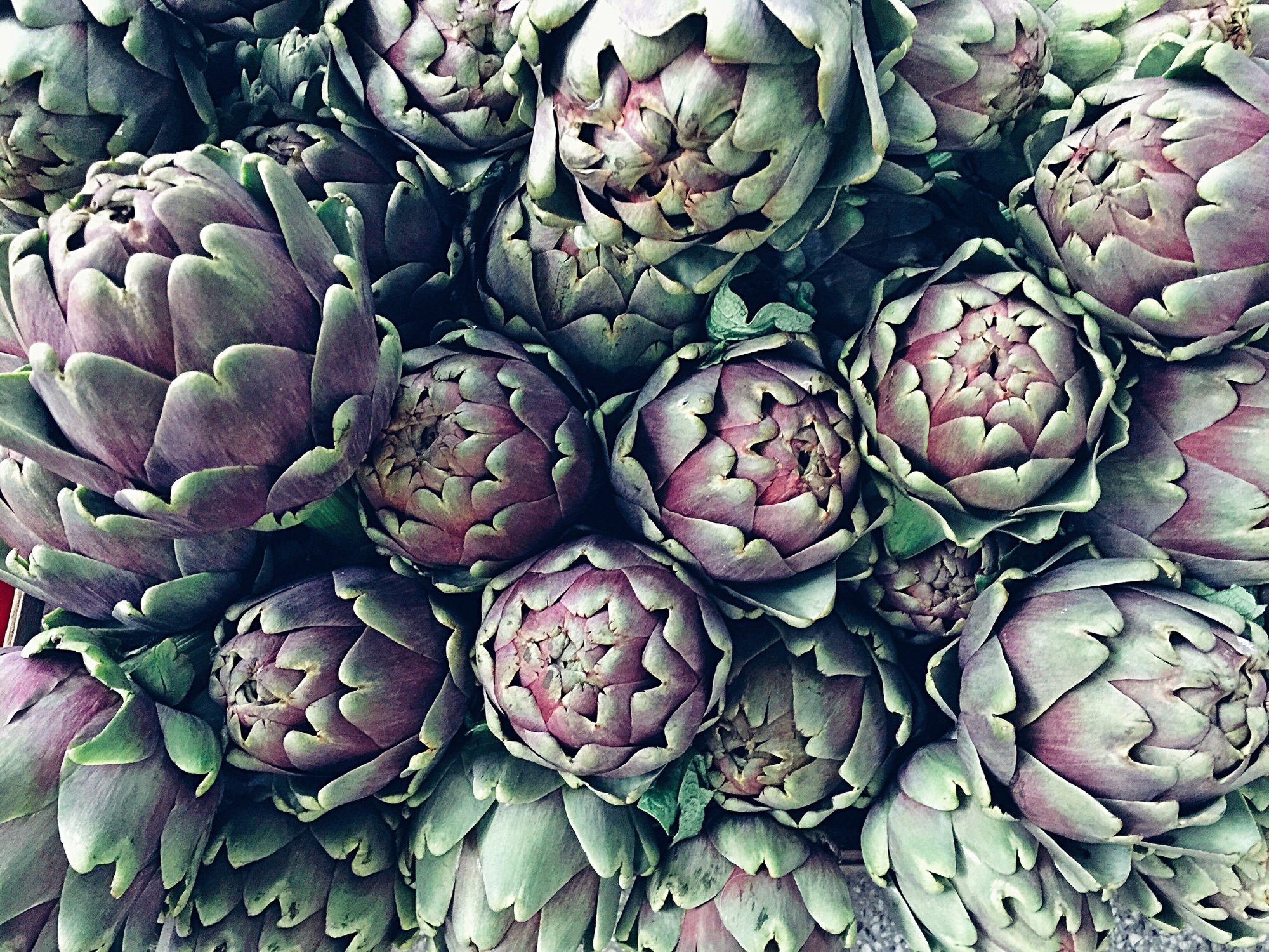 Artichokes Getty 1/21/20