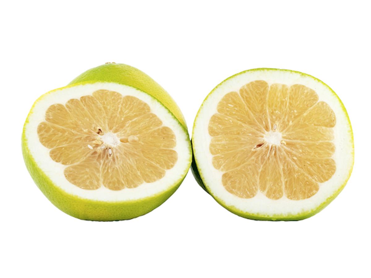 Melogold Grapefruit