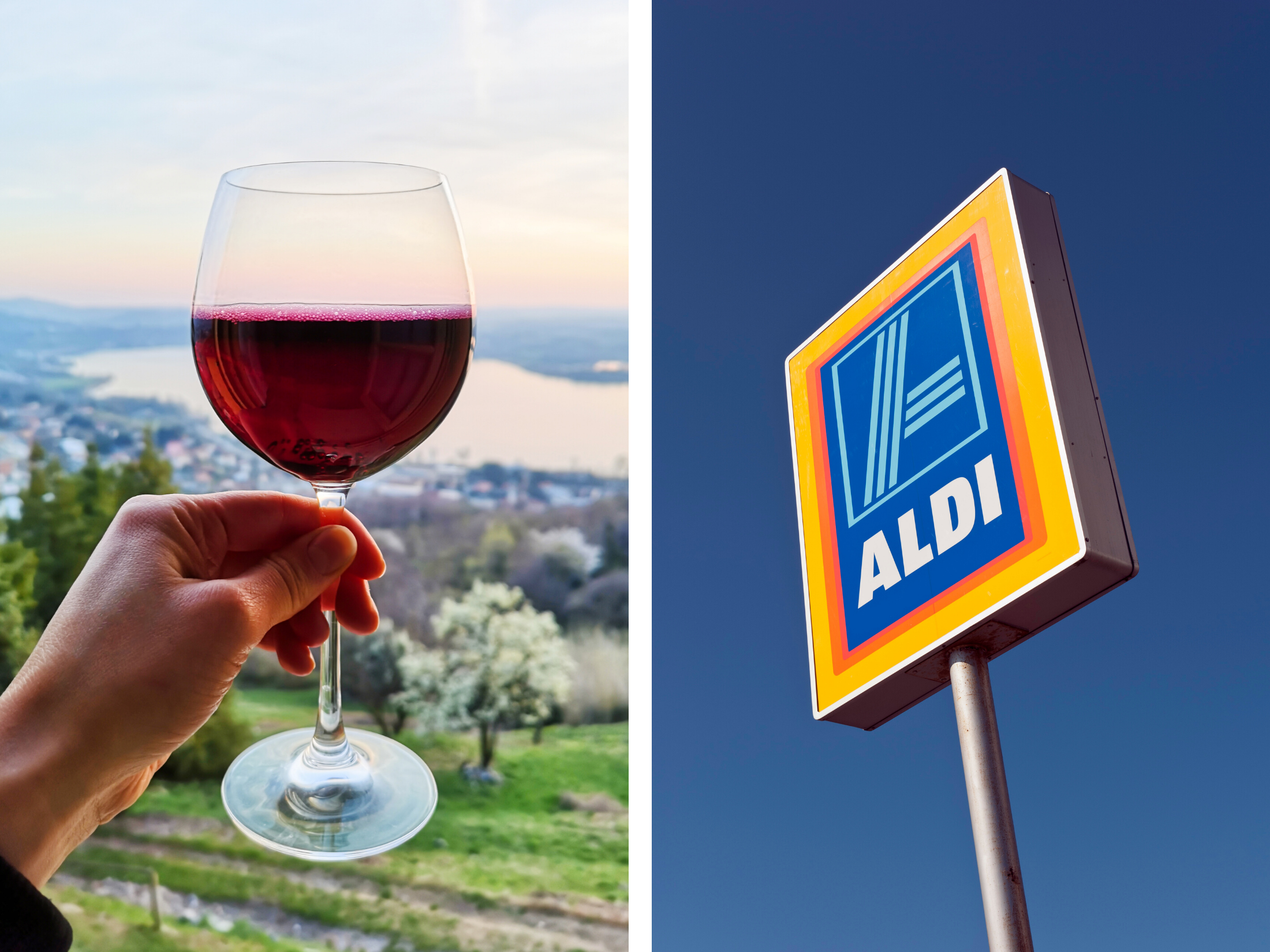 Aldi Wine Guide Header