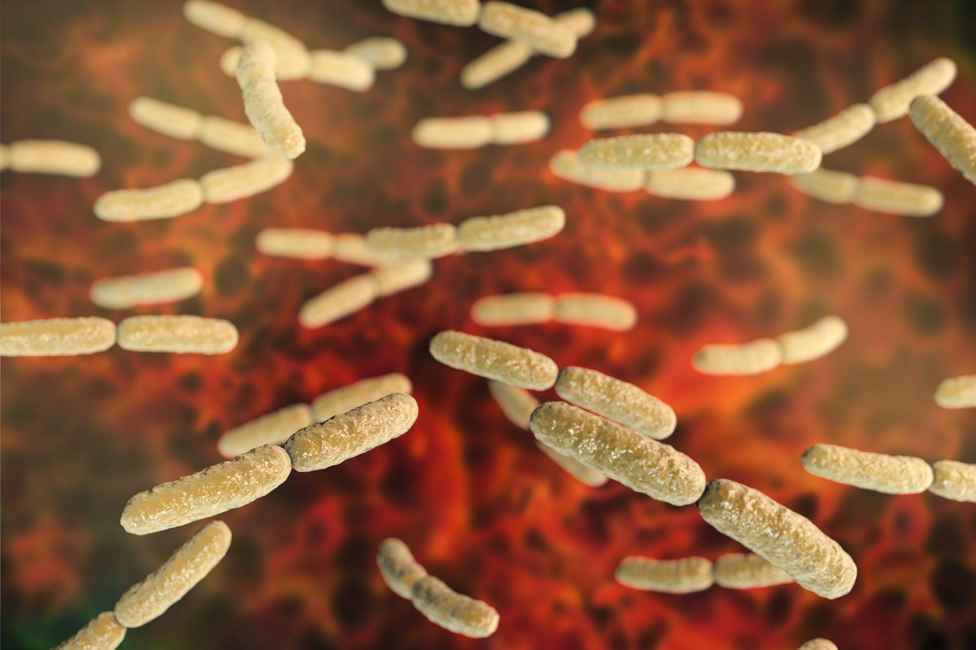 Bacteria Getty 3/30/20