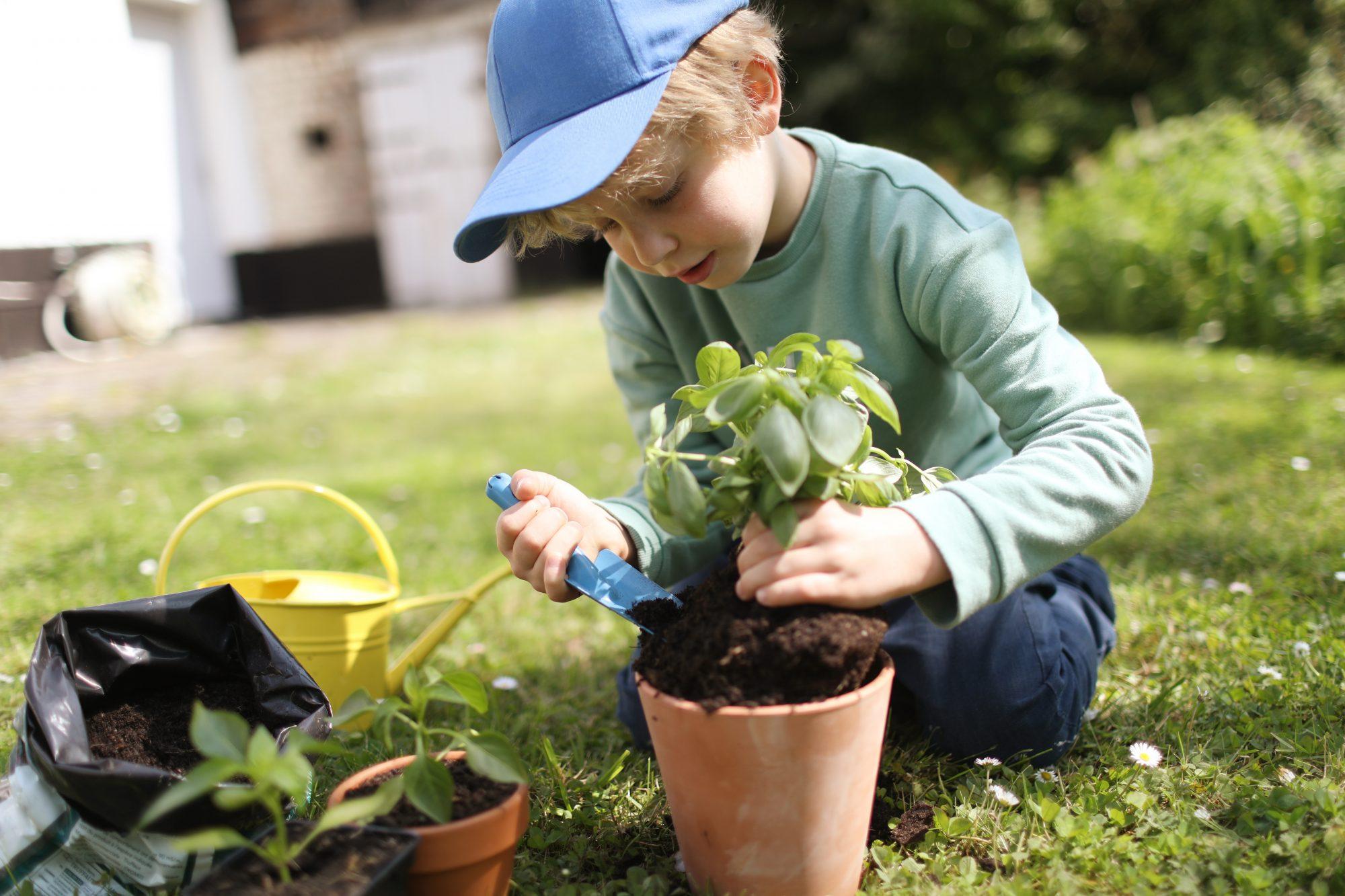Child planting basil Getty 4/24/20