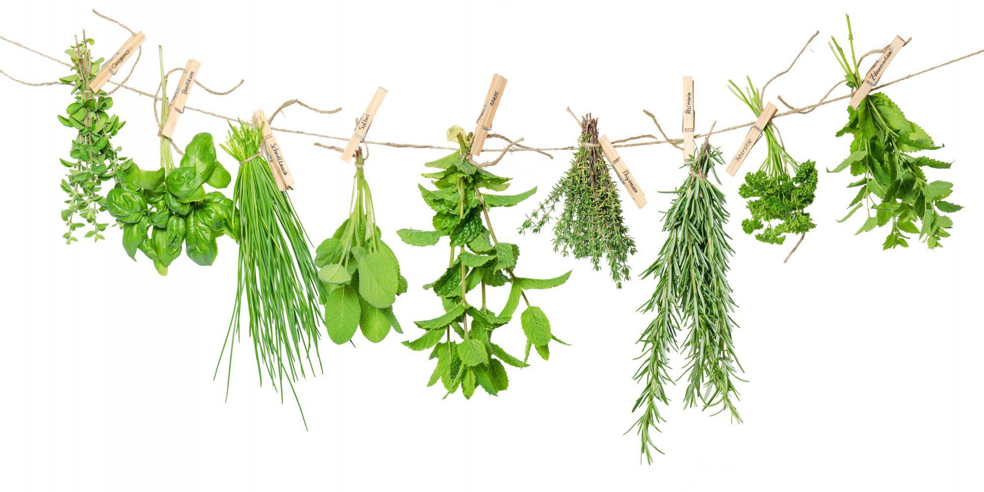 Herbs drying Getty 5/26/20