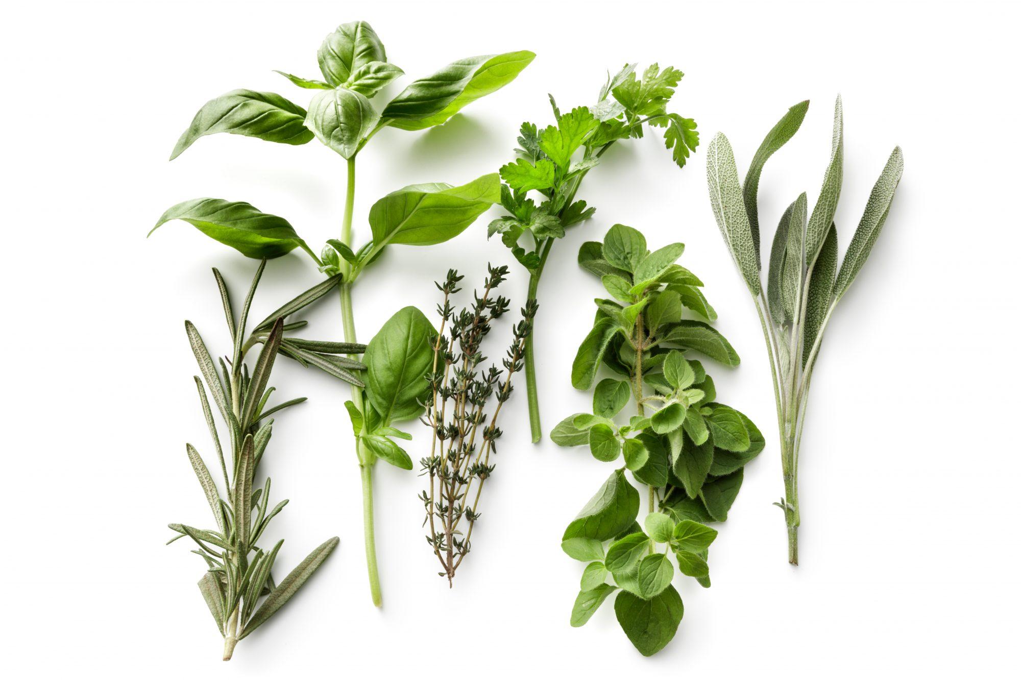 Herbs Getty 7/13/20