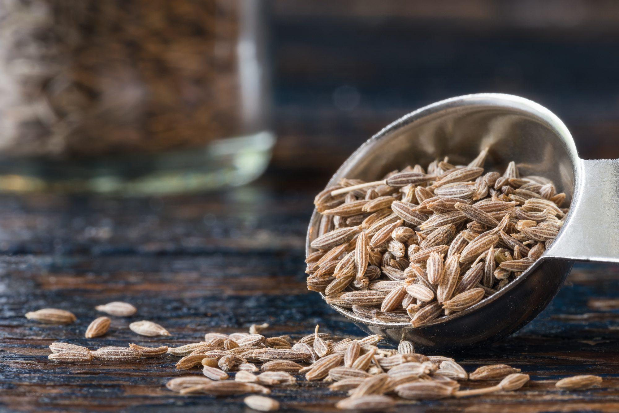 100520_Cumin Seeds