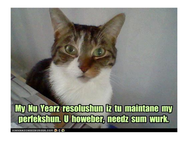 RESOLUTION: BE PURR-FECT