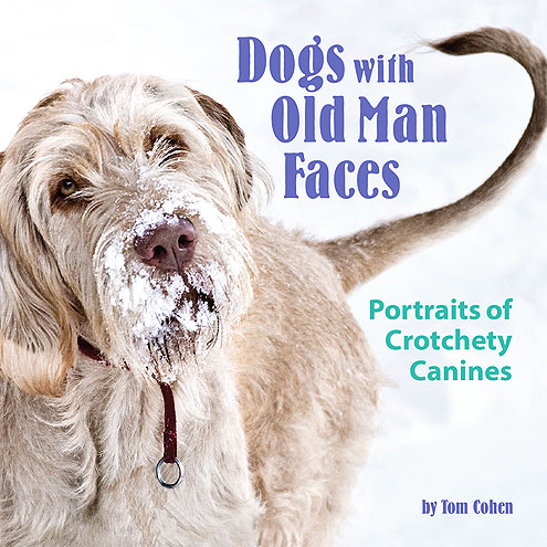 OLD DOGS, NEW PICS