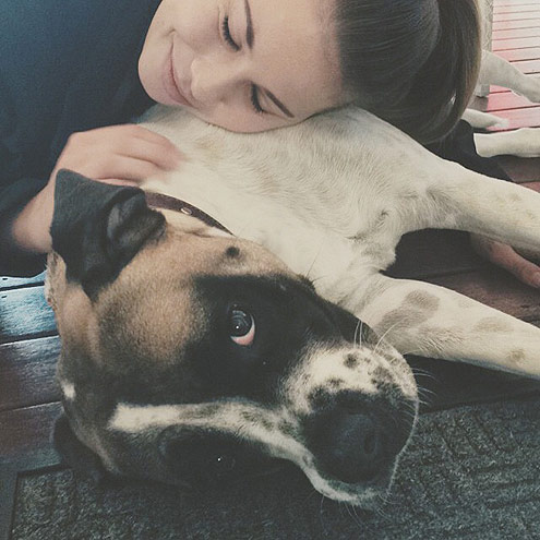 ON HUGGING YOUR PETS