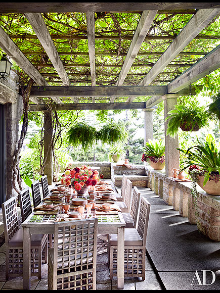 HER PATIO IS COVERED IN KIWI VINES