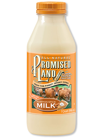 PUMPKIN SPICE MILK