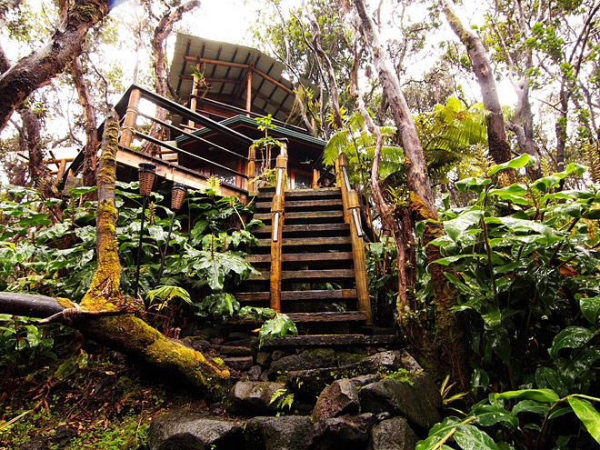 TREEHOUSE, HAWAII