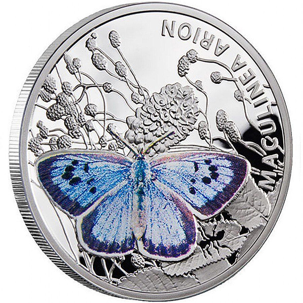 LARGE BLUE COIN