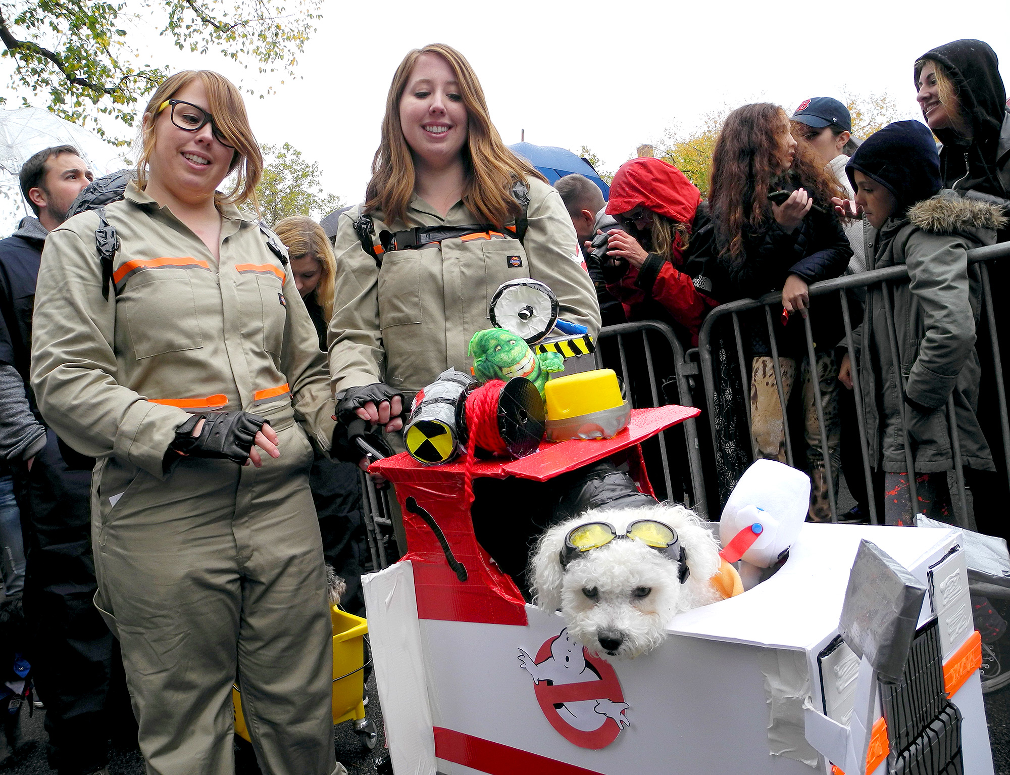 New Yorkers show costumed dogs for Halloween