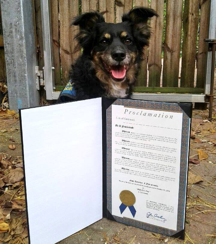 dog gets honor from city