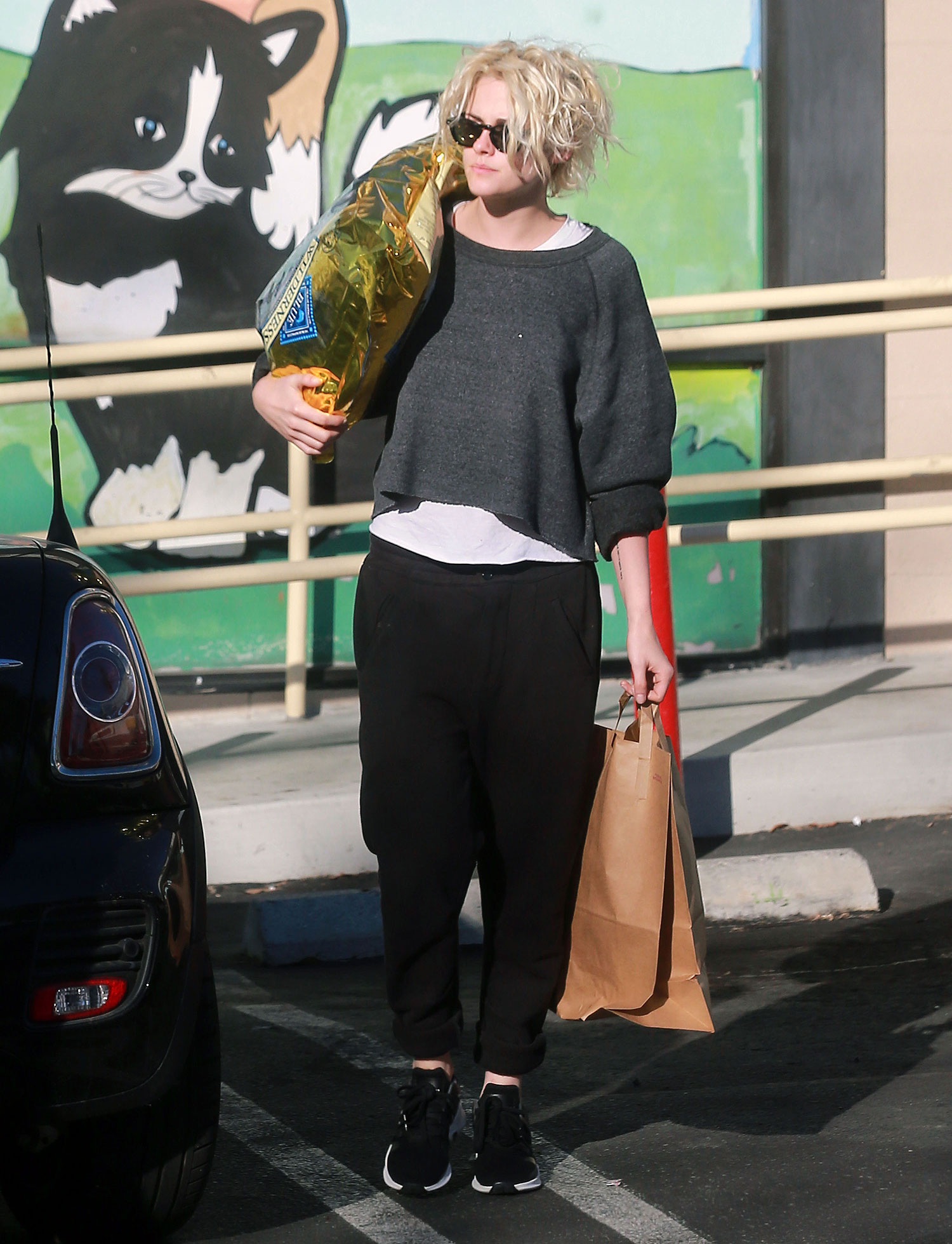 Exclusive... Kristen Stewart And New Girlfriend St. Vincent Shop For Pet Food