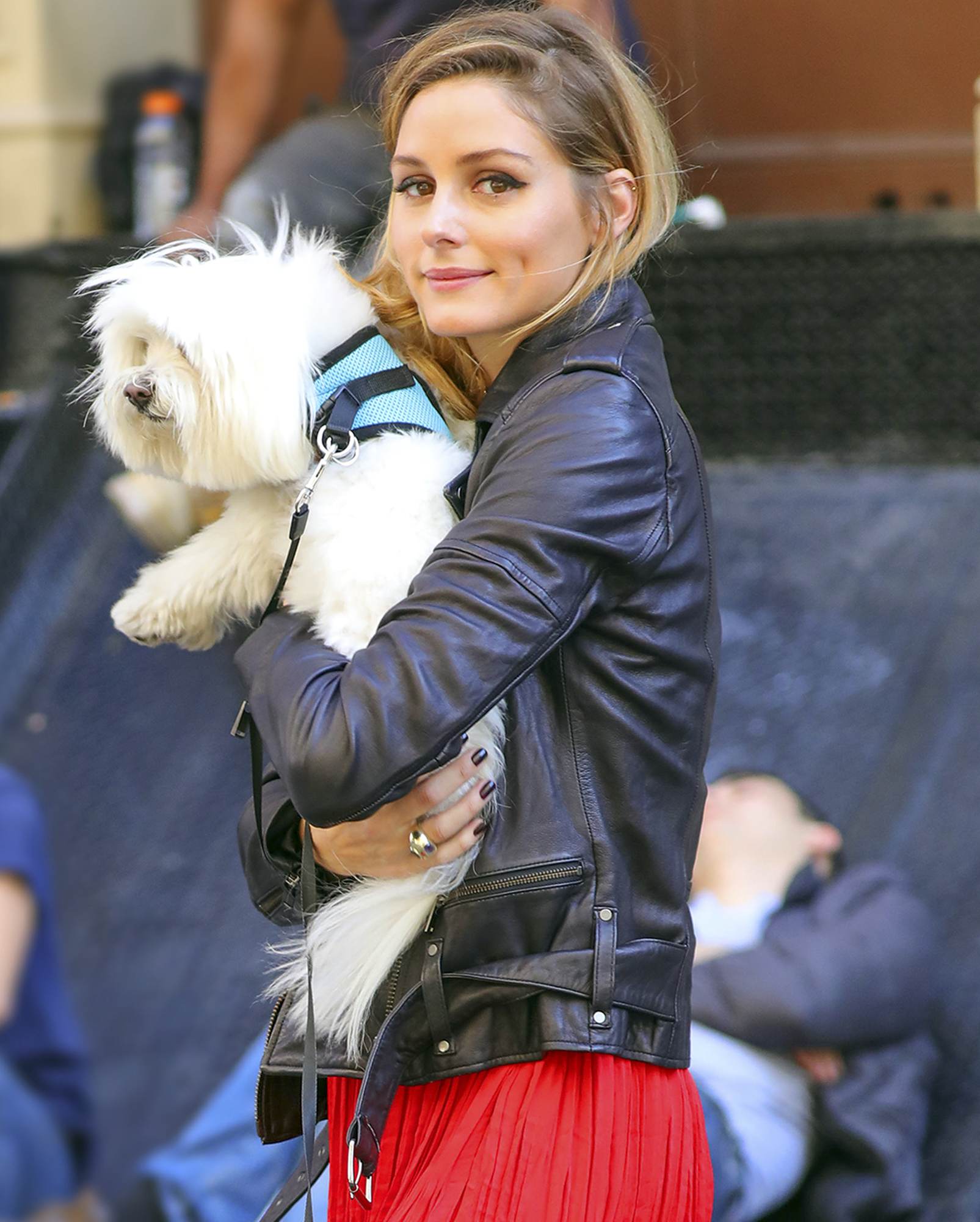 Olivia Palermo out and about with her dog Mr. Butler in New York