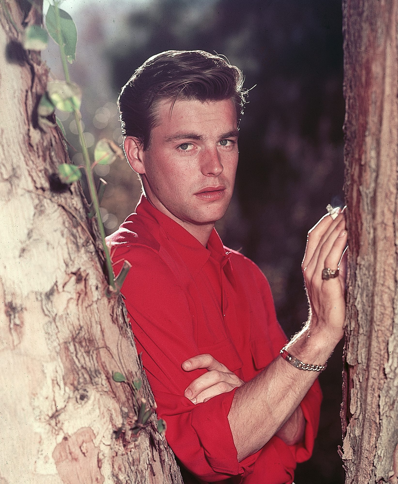 2/3/1955-Palm Springs, CA: Actor Robert Wagner stands, posed, smoking beside tree, close-up.