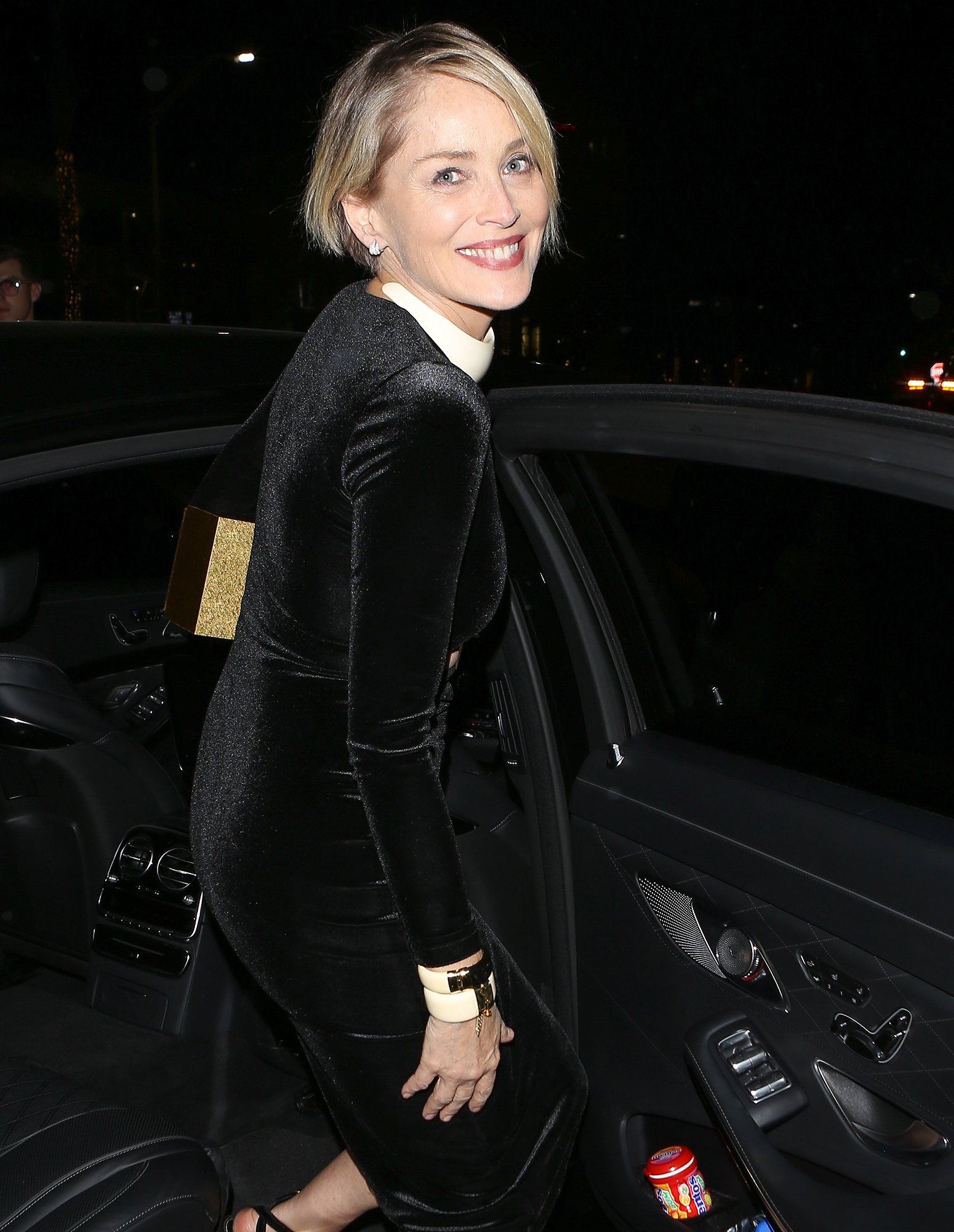 Sharon Stone shines at the 'Allied' Premiere After Party