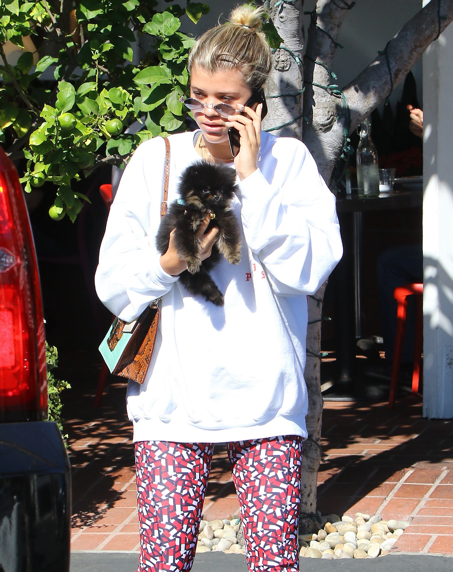 *EXCLUSIVE* Sofia Richie leaves Mauro's with a puppy in tow