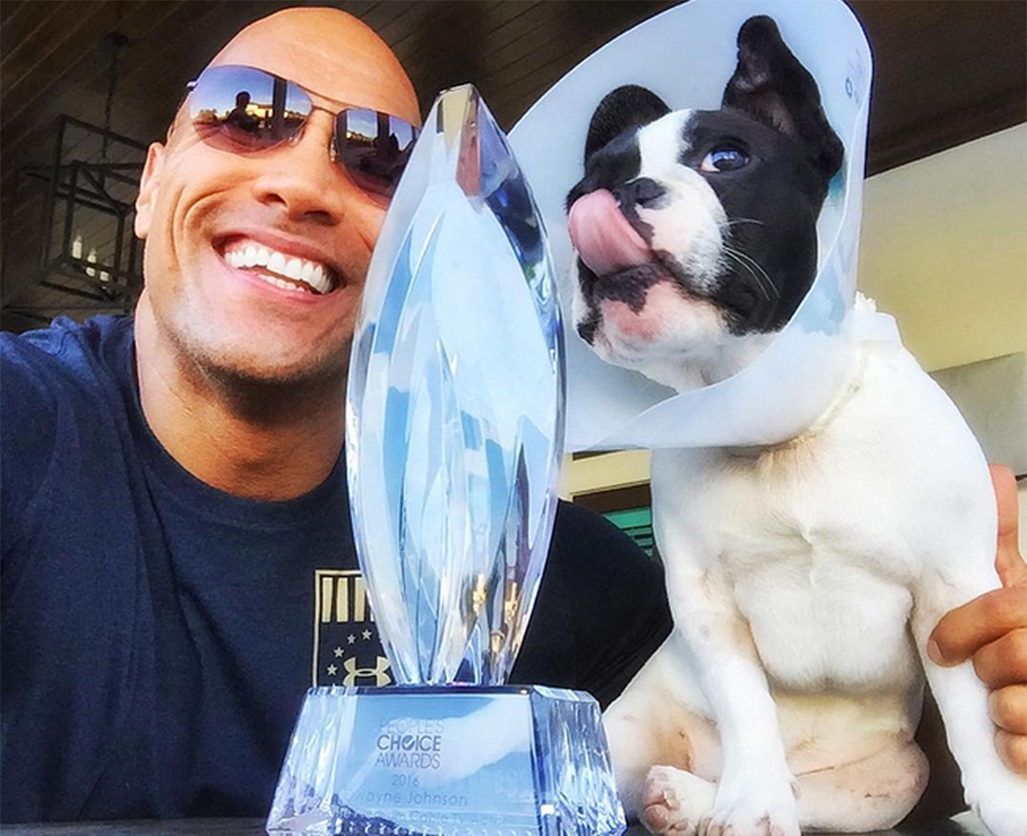 The Rock's Dog - Pets