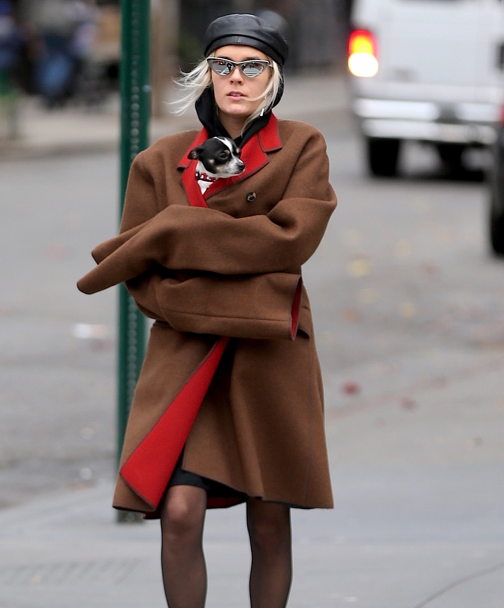 Exclusive... Chloe Sevigny Out And About In New York City With Her Dog