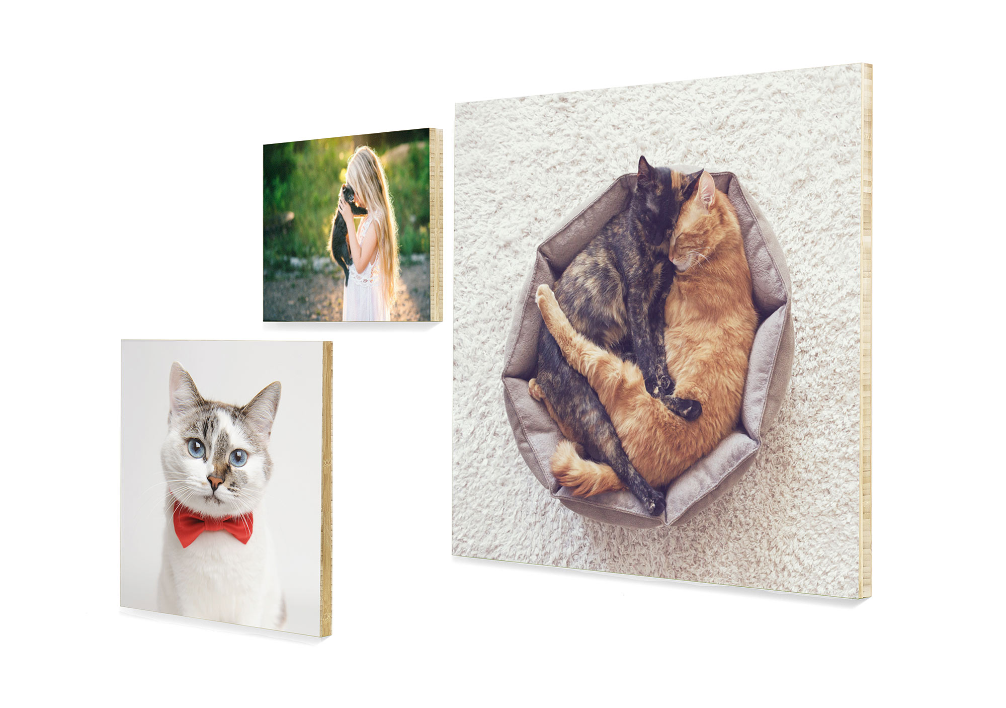 Pet Lover Gifts - 6