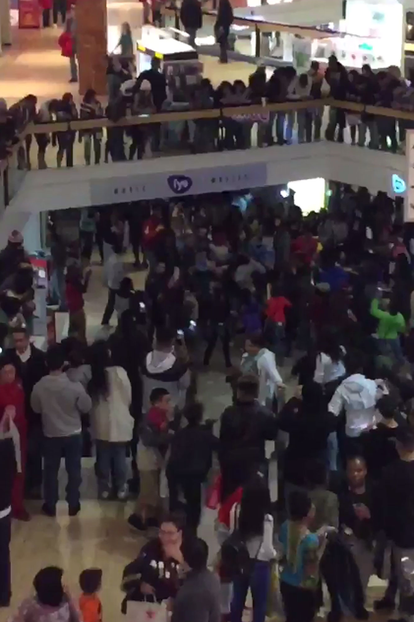 mall-fight-2000