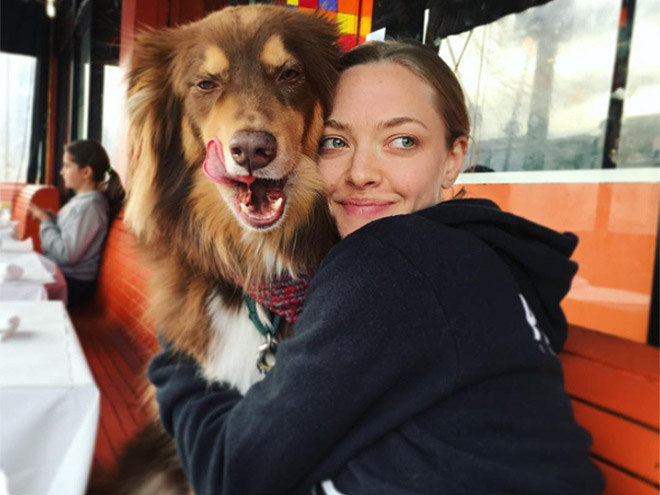 AMANDA SEYFRIED: SPENDS IT WITH HER DOG