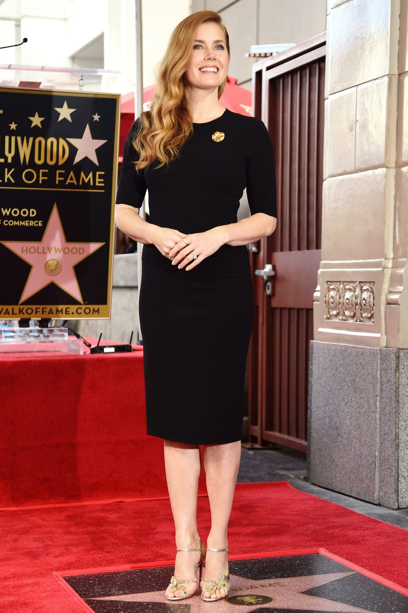 US-ENTERTAINMENT-HWOF-AMY ADAMS