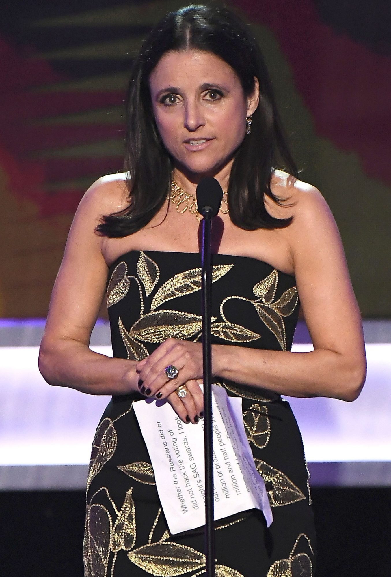 23rd Annual Screen Actors Guild Awards - Show