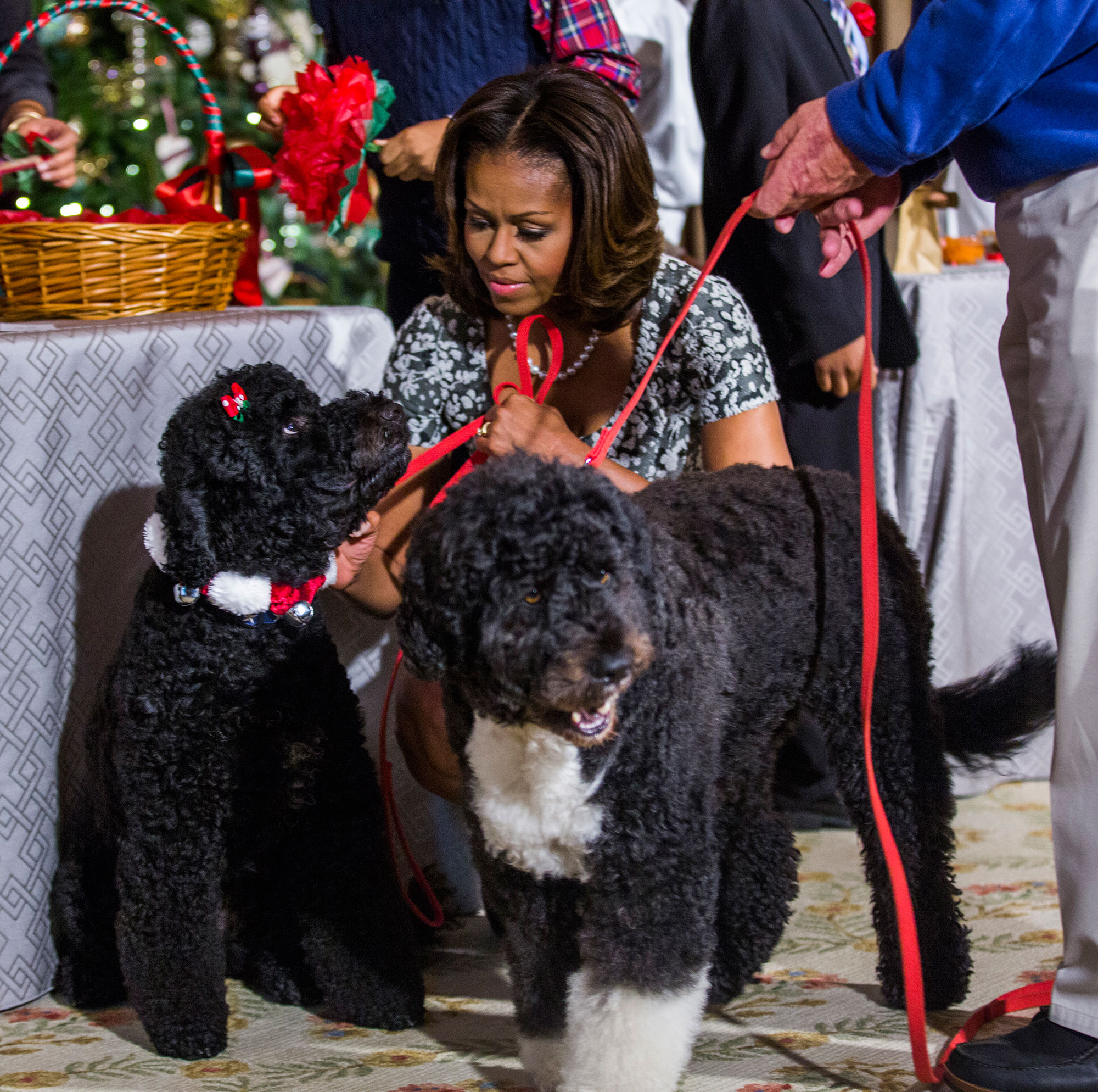 First Lady Michele Obama Unveils the Holiday Decorations at the White House