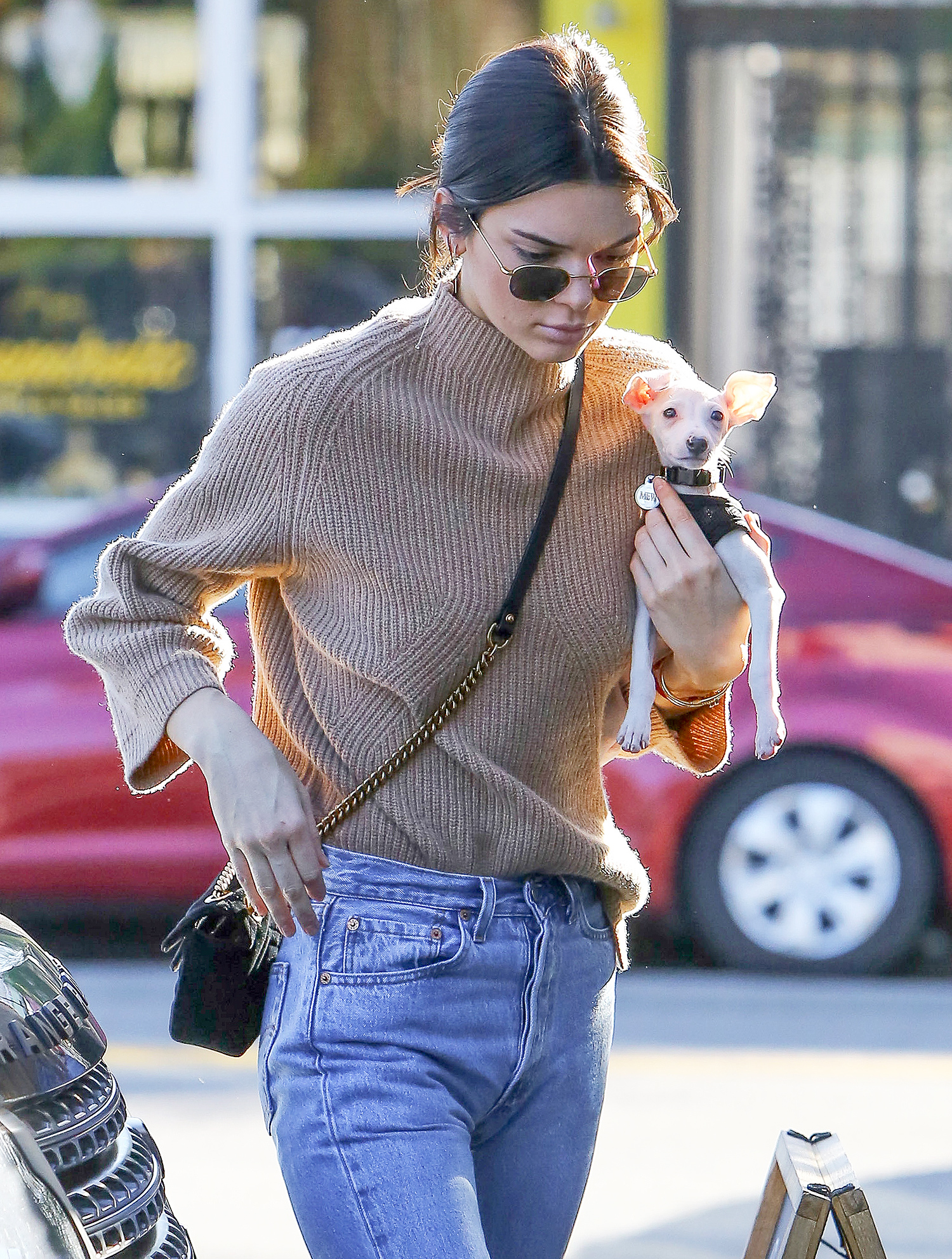 *EXCLUSIVE* Kendall Jenner brings her puppy to lunch