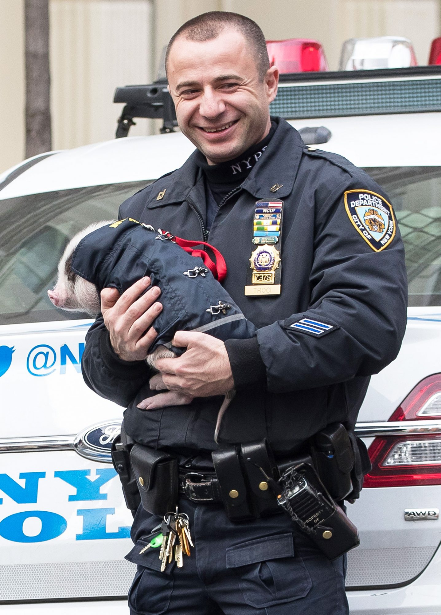 Police officers seen posing for a photo with little pig in Soho, New York.