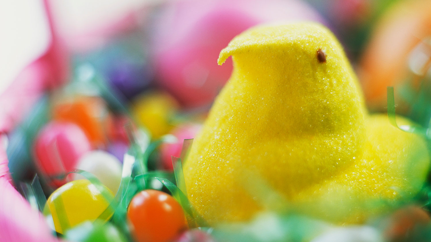Marshmallow chick in Easter basket