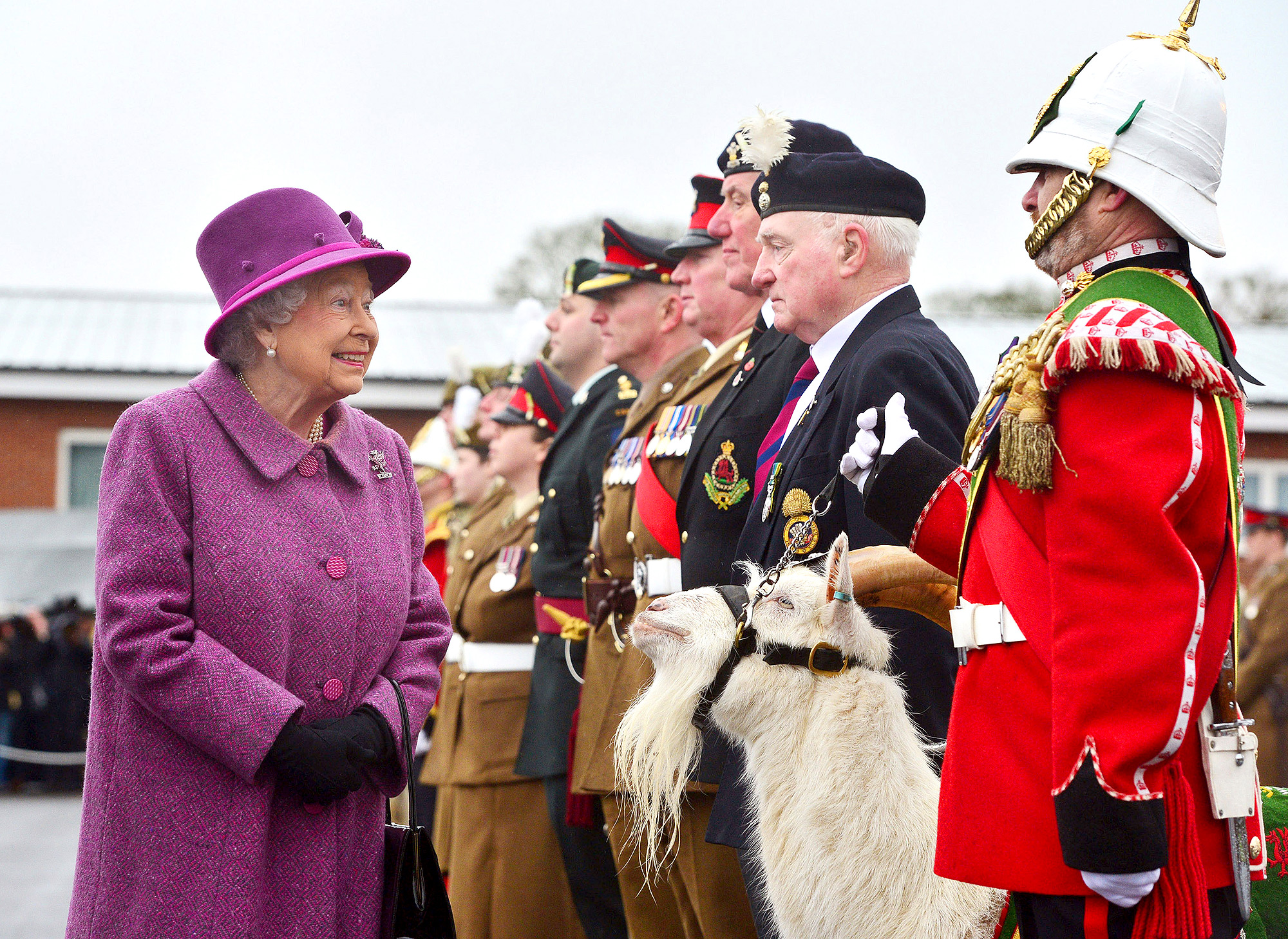 The Queen Presents Leeks To The Royal Welsh To Mark St David's Day   ***BESTPIX***