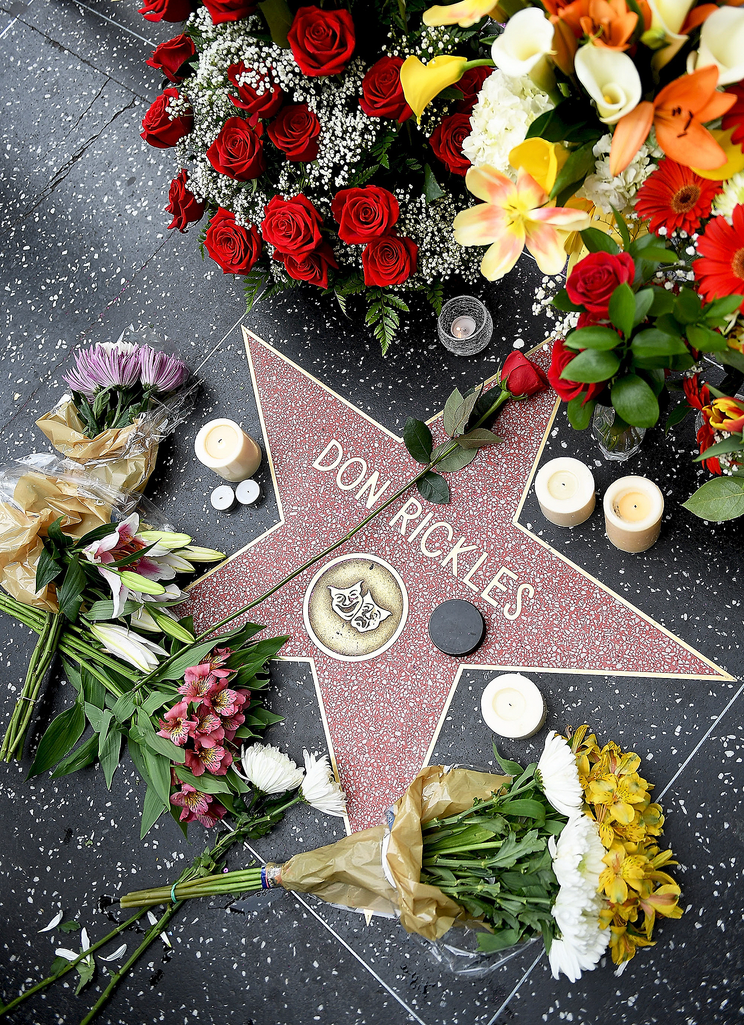 Flowers Placed On The Hollywood Walk Of Fame Star Of Don Rickles