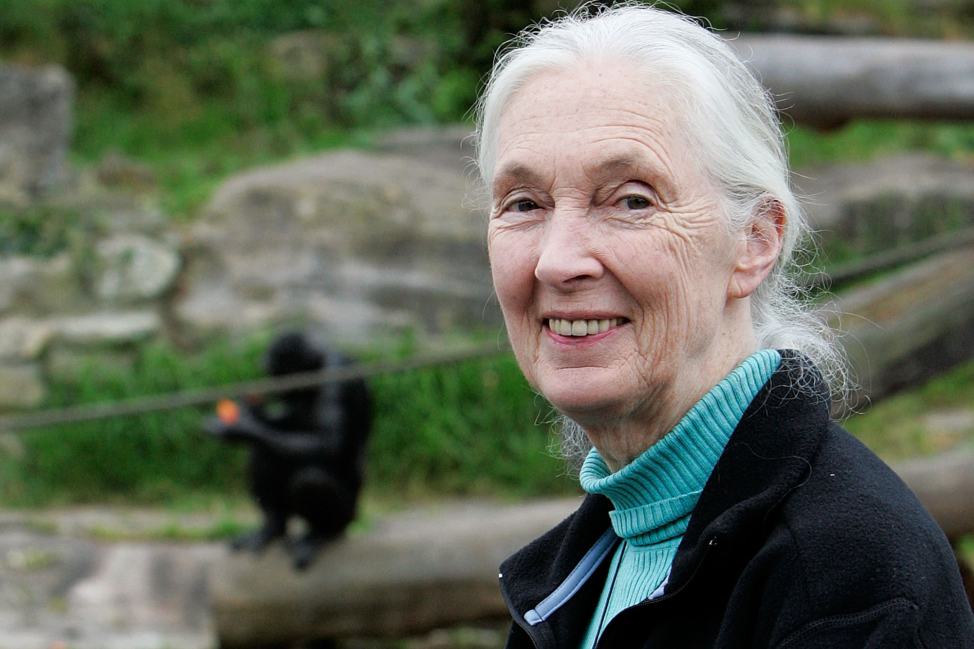 Dr Jane Goodall Speaks At Taronga Zoo