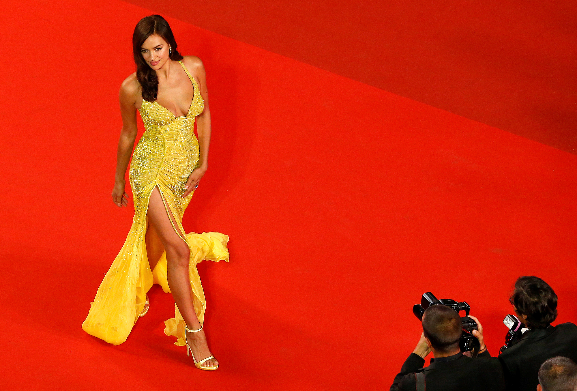 """Hikari (Radiance)"" Red Carpet Arrivals - The 70th Annual Cannes Film Festival"