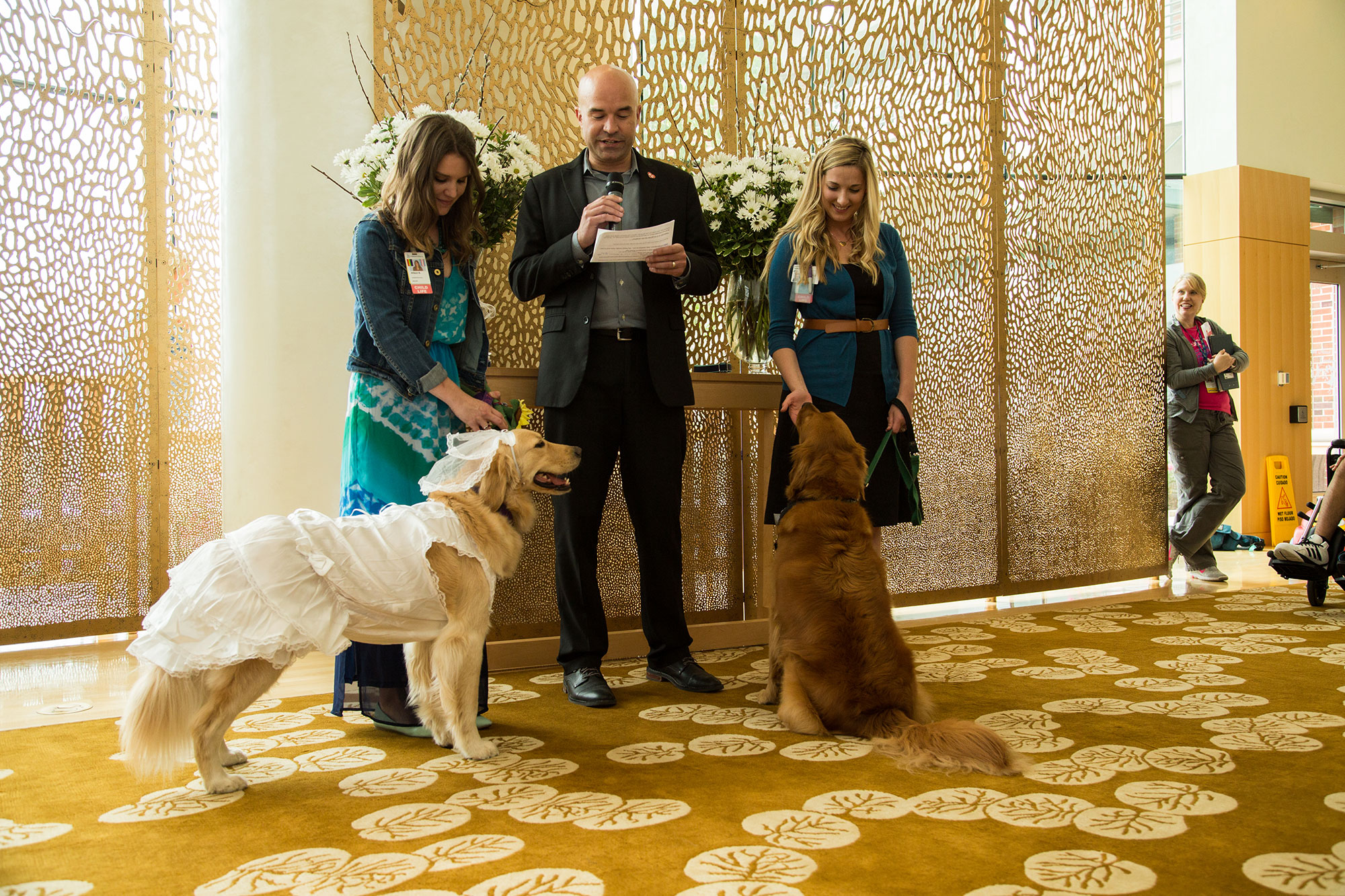 therapy-dog-wedding-4