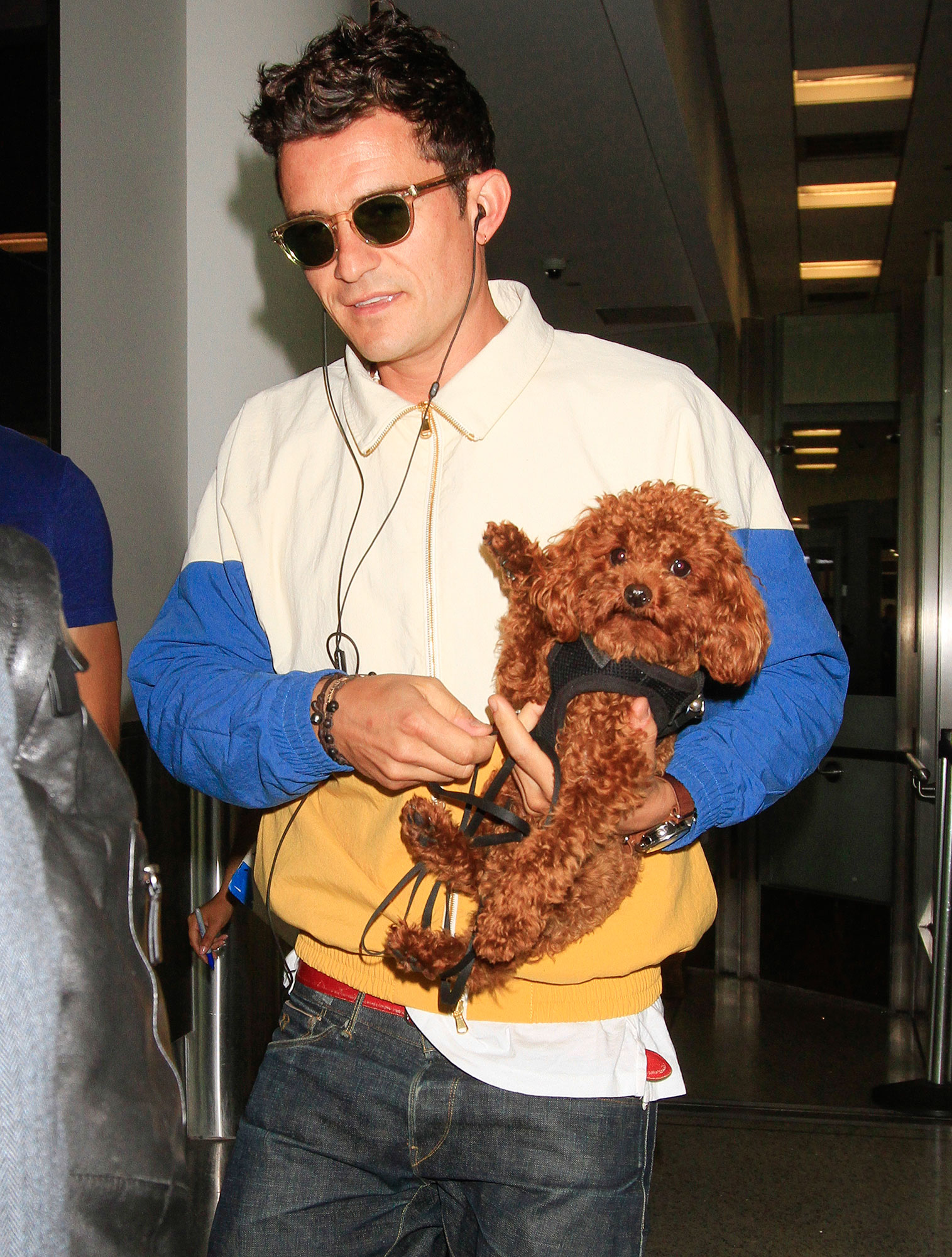 Orlando Bloom is seen with his adorable dog after being spotted with Leonardo DiCaprio and after Katy Perry discussed how good the English actor is in bed.