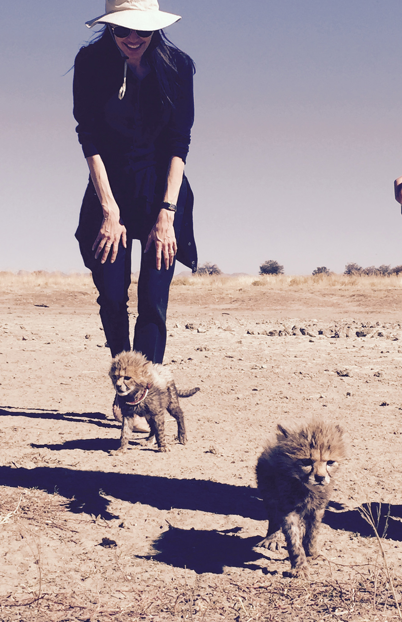 F:PHOTOMediaFactory ActionsRequests DropBox47865#JolieAngie-with-cubs.jpg