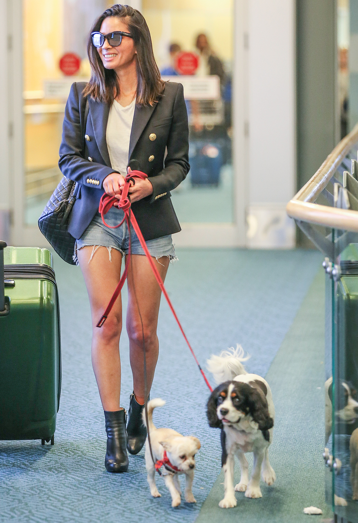 Olivia Munn Brings Her Rescue Dogs to Canada