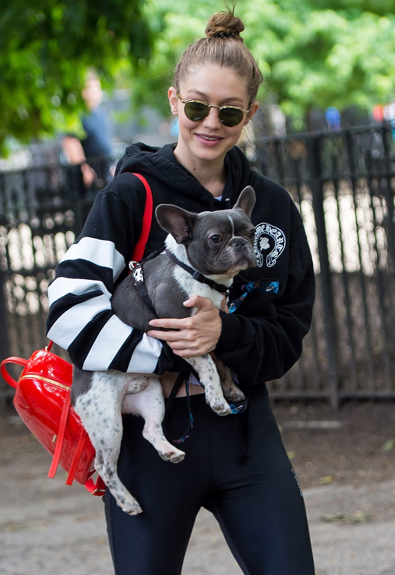 celebs-carrying-dogs-2