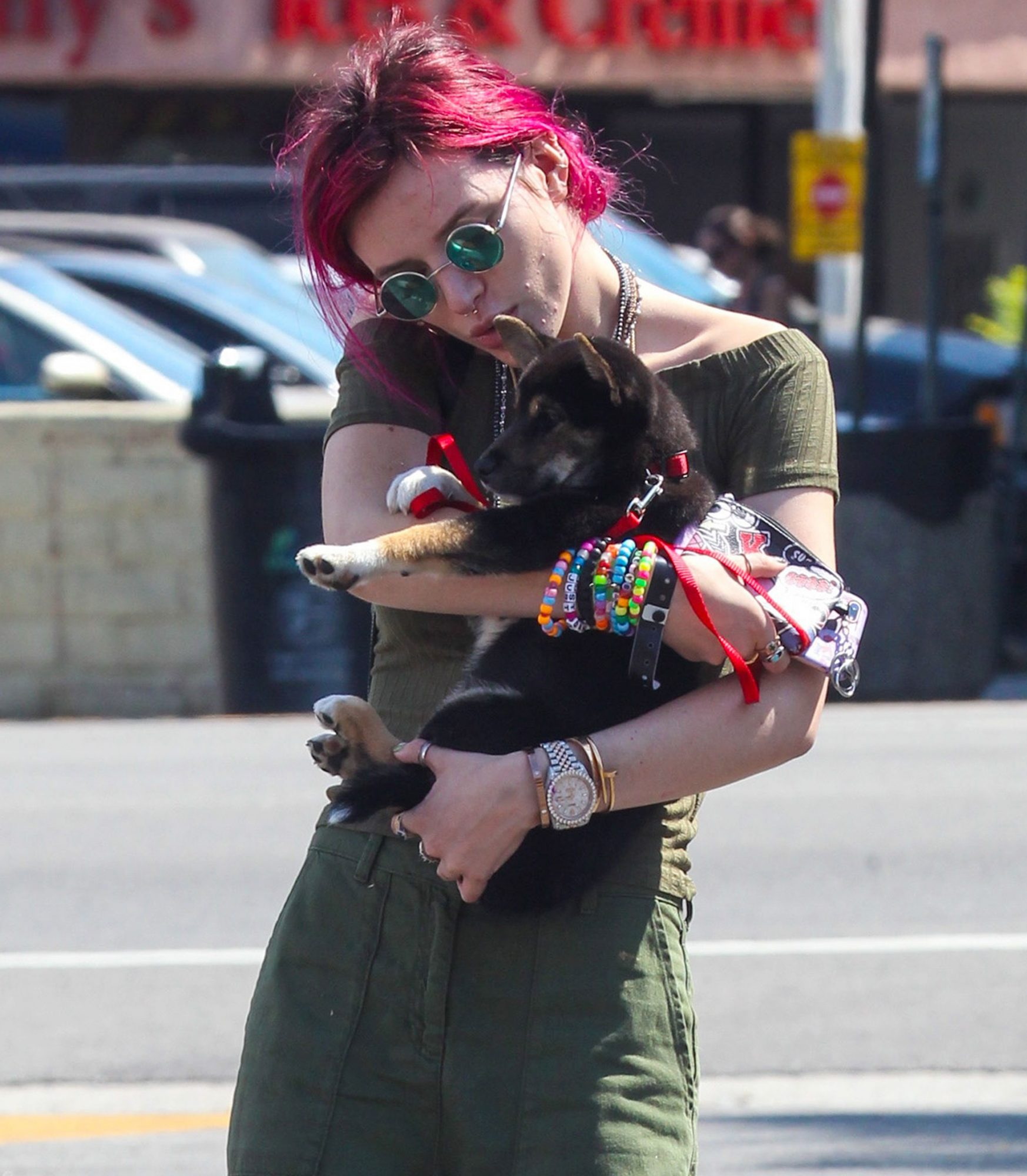 celebs-carrying-dogs-9