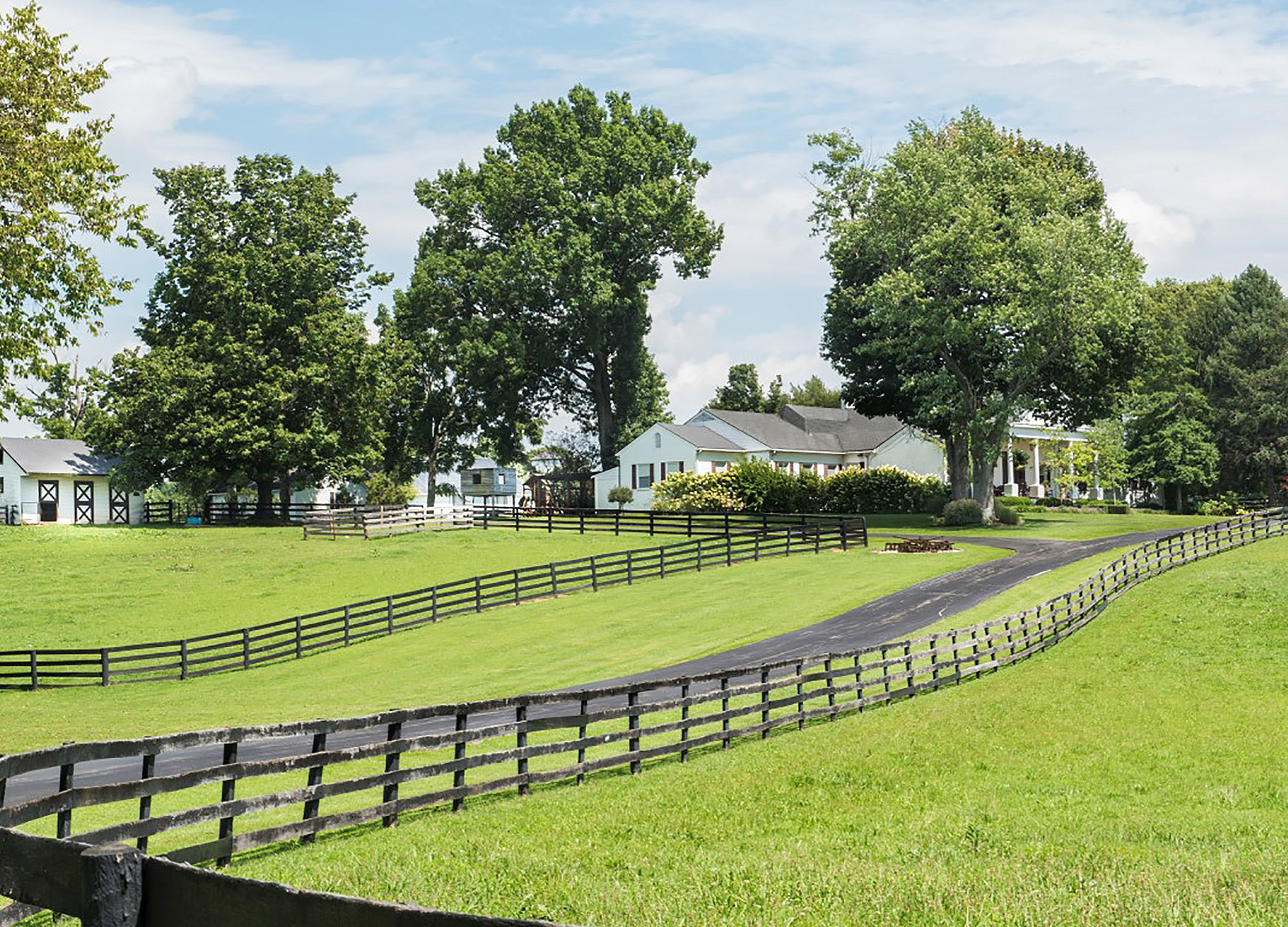 Johnny Depp's horse farm fails to sell at auction