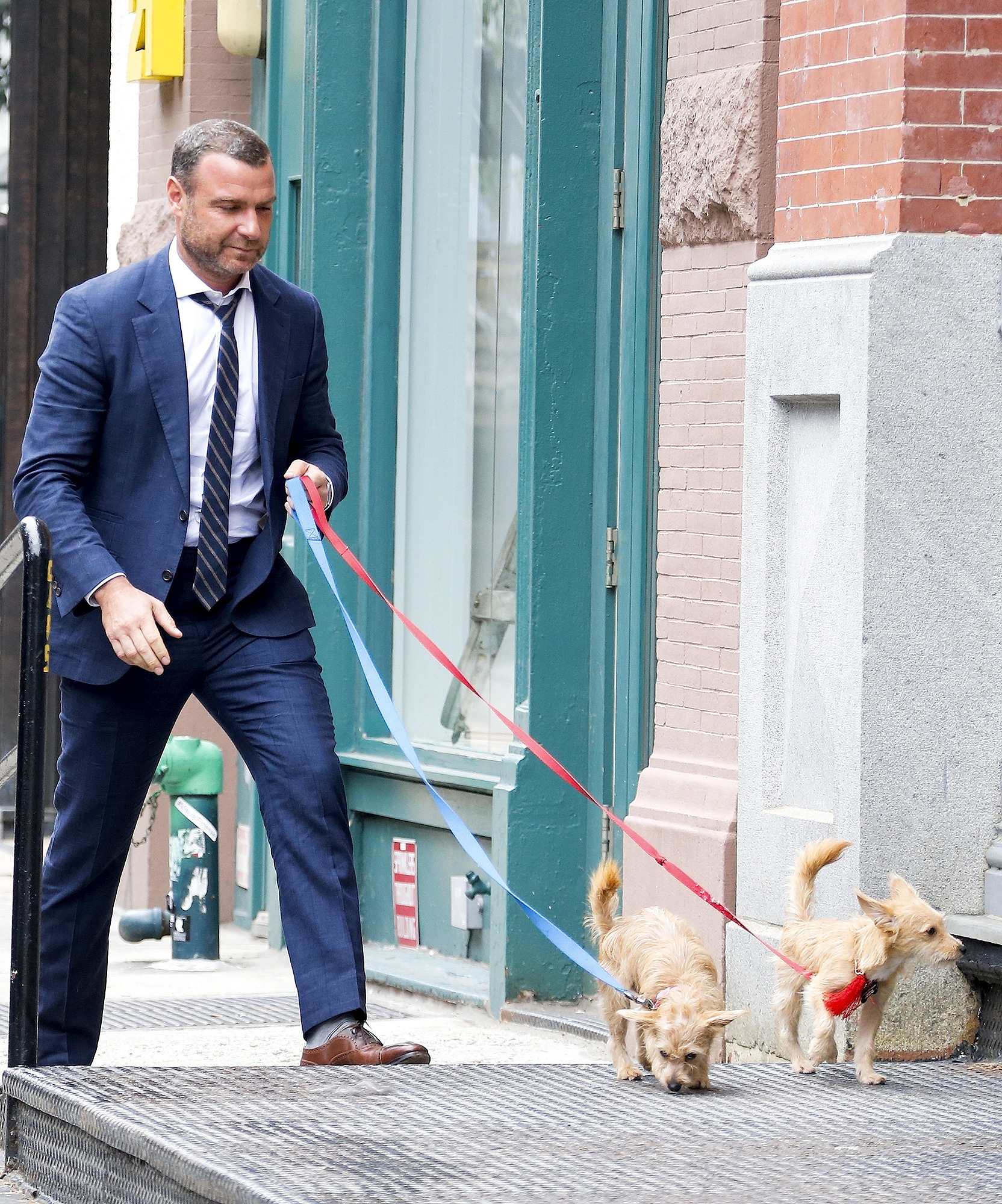*EXCLUSIVE* Liev Schreiber gets tangled up in Blue!